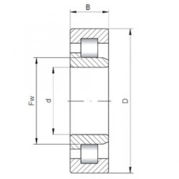 55 mm x 140 mm x 33 mm  ISO NJ411 cylindrical roller bearings