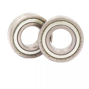 SKF/NSK/NTN/Koyo/NACHI Thrust Ball Bearing (51204)